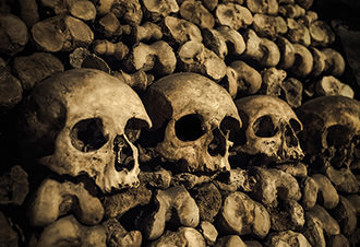Paris Catacombs Skip-The-Line Tour