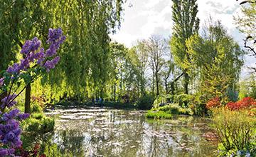 Monet's Gardens & Home in Giverny Half-Day Trip